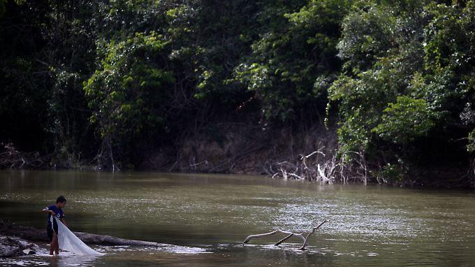 Fluss im Amazonas-Regenwald in Brasilien.