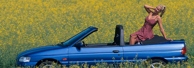 Ein Ford im Kornfeld: Entweder sind die Besitzer der Fahrzeuge aus Köln besonders umtriebig oder genügsam.