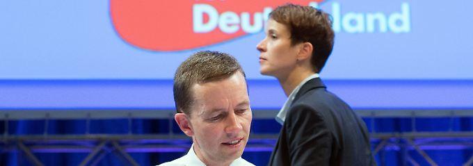 Der liberal-konservative Lucke kämpft um die Zukunft der Partei nach seinen Vorstellungen.