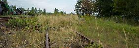 Unverarbeitete Geschichte: Zwischen Wroclaw und Walbrzych ruhen nicht nur alte Gleise aus der Zeit des Zweiten Weltkriegs.