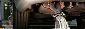 Vorwürfe gegen zahlreiche Marken: Auffällige Abgastests bei BMW und Daimler