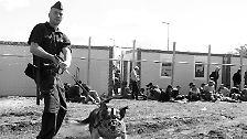 Serbien, Ungarn, Österreich, Mazedonien: Flucht entlang der Balkan-Route