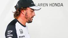 Frustrierendes Jubiläum in Sotschi: Alonso leidet im Karriere-Herbst
