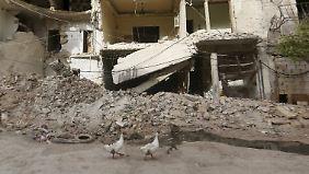 Aleppo zählt zu den umkämpftesten Städten in diesem Krieg - ganze Stadtviertel sind völlig zerbombt.