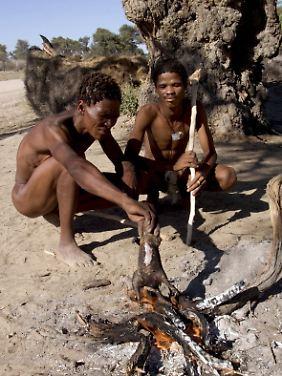 Buschmänner im Kongo, Afrika.