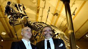 """""""Tristan Otto"""" in Berlin: Original-Skelett eines T-Rex im Naturkundemuseum ausgestellt"""