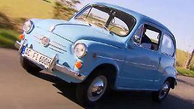 Sparsames Kult-Ei: Fiat 600 macht seine Besitzer stolz