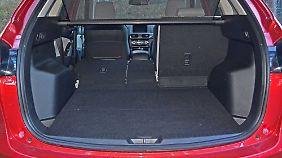 Mit 503 Litern Kofferraumvolumen lassen sich auch bei aufgestellter Rückbank größere Reisen antreten.