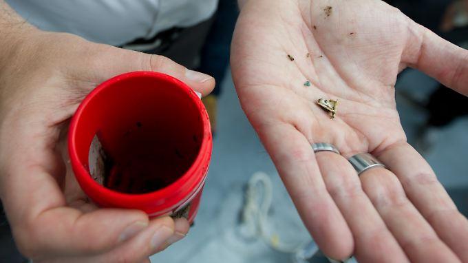 Verunreinigung mit Mikroplastik: Rhein zählt zu weltweit am stärksten belasteten Gewässern