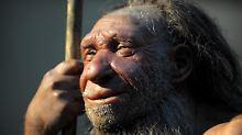 Stärkung der Abwehrmechanismen: Neandertaler haben Immunsystem beeinflusst