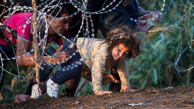 Wer den Zaun, der die Grenze Ungarns schützt, missachtet, wird bestraft.
