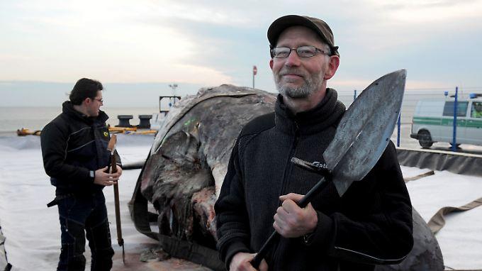 Walpräparator Aart Walen stieß im Pottwal-Magen auf gähnende Leere.
