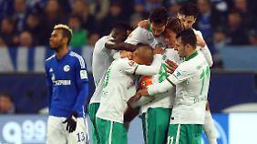 Golden Boys: Tore der Altstars Clemens Fritz und Claudio Pizarro leiteten das Comeback der Bremer auf Schalke ein.