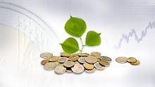 n-tv Geldanlage-Check 2011: Profitieren von den Profis
