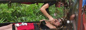 """Dschungelcamp, Tag 11: """"Kasalla""""-Ausraster am Dschungelteich"""