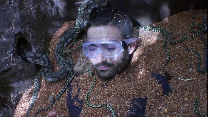 Final-Tag im Dschungelcamp: Es kann nur einen wahren König geben!