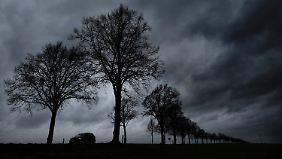 Nachts wird es nass und mild: Woche startet mit Regen und Sonne