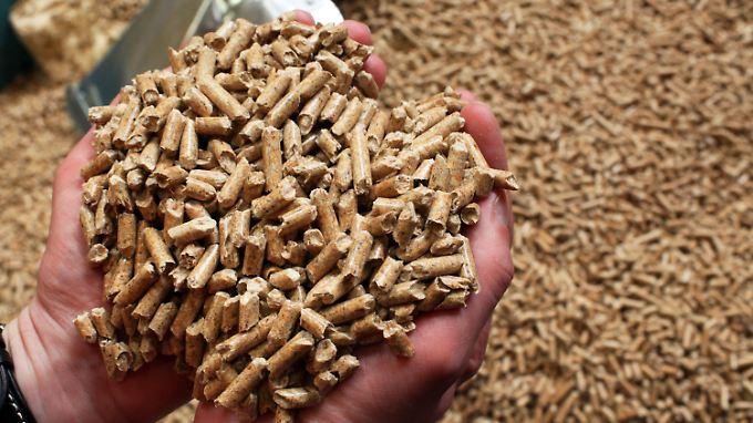In Wismar werden Holzpellets hergestellt.