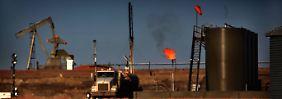 Jedes dritte Unternehmen vor Aus: Studie sagt Sterben vieler Ölfirmen voraus