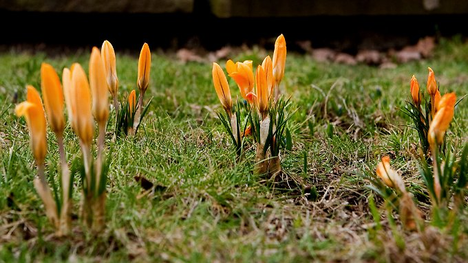 Gibt es ein Frühlingserwachen an den Börsen?