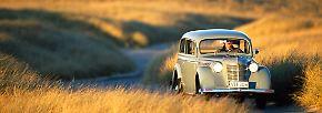 ... während die Volkswagen Käfer erst nach dem Krieg richtig das Krabbeln lernten. Da musste der Kadett bereits eine andere Volksmotorisierung einleiten. Wurden die Produktionsanlagen des Knauserkönigs doch 1946 als Reparationsleistung an die Sowjetunion geliefert. Dort startete er als sparsamer Moskwitsch 400 zur zweiten Karriere.