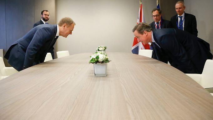 Kann Cameron die Einigung zu Hause als Erfolg verkaufen?