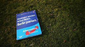 Abhängig von der Flüchtlingsdebatte: Politiker zweifeln an dauerhaftem Erfolg der AfD