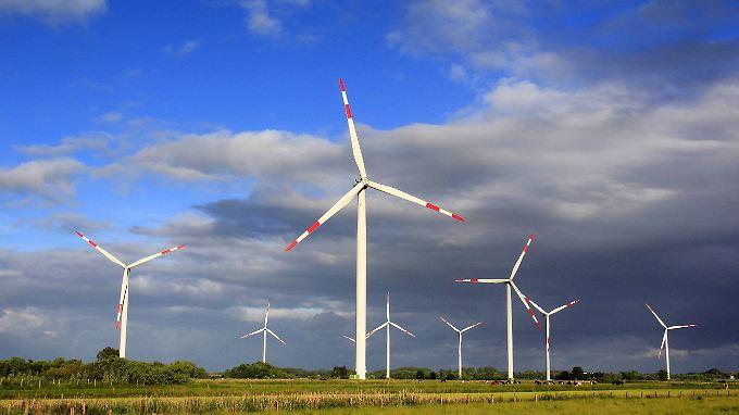Das weltweite Volumen von nachhaltigen Investments wird bereits auf 77 Milliarden Euro geschätzt.