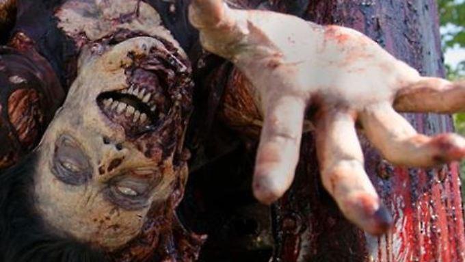 """Ein Zombie-Biss ist hohe Schauspielkunst - was dabei schiefgehen kann, erzählt """"The Walking Dead""""-Gaststar Alicia Witt."""