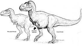 Der schwangere T.Rex liefert neue Erkenntnisse.