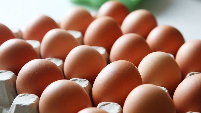 Pro Kopf werden in Deutschland derzeit etwa 232 Eier gegessen.