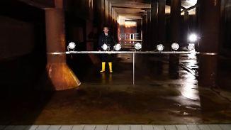 Wannsee und 700 Brunnen: Wie die Berliner mit Trinkwasser versorgt werden