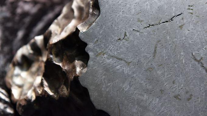 Die geschliffene Oberfläche des Meteoriten von Treysa/Rommershausen mit den widmannstättenschen Figuren (charakteristische Strukturen im meteoritischen Material).