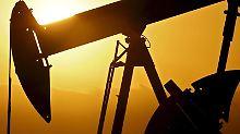 Rohstoffe sind derzeit als Depot-Beimischung interessant. Foto: Larry W. Smith