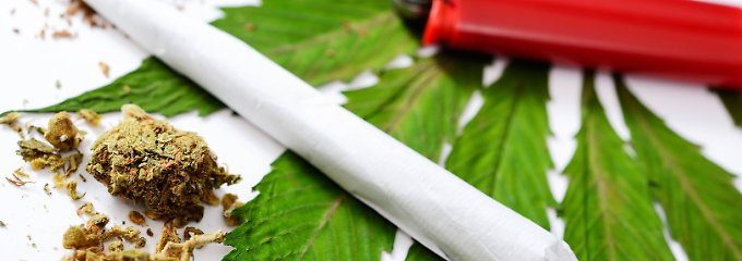 Die Gesundheitsrisiken des Cannabis-Konsums sollten nicht verharmlost werden.