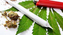 Gesetzesentwurf im Bundeskabinett: Gröhe will Cannabis auf Rezept ab 2017