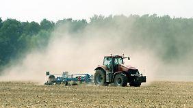 In der Land- und Forstwirtschaft ist mehr als jeder fünfte Mitarbeiter (22 Prozent) Staub ausgesetzt. Foto: Arno Burgi