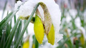 Kaltlufteinbruch am Wochenende: Winter schlägt noch einmal zu