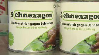 n-tv Ratgeber: Studentin entwickelt giftfreies Mittel gegen Schnecken