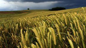 Regnerisch am Wochenende: Sommer verwöhnt Süden und Osten, Norden bleibt unbeständig