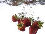 Frage & Antwort, Nr. 438: Sollen Erdbeeren gebadet werden?