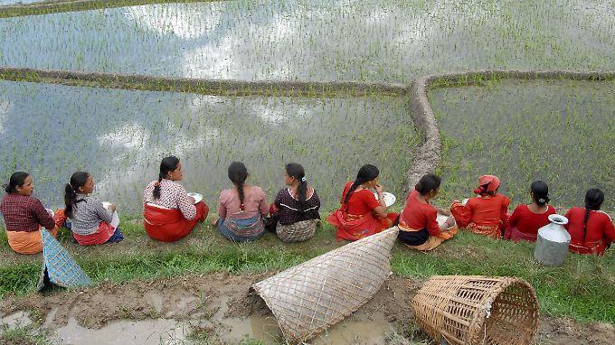 Bäuerinnen sitzen vor einem Reisfeld in Nepal.