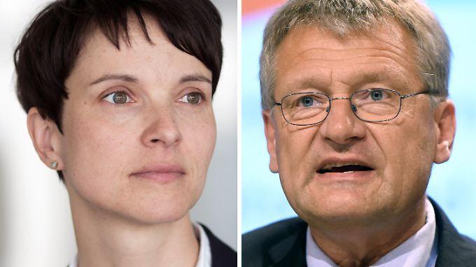Das Verhältnis ist angespannt zwischen den AfD-Bundesvorsitzenden Frauke Petry und Jörg Meuthen.