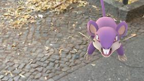Welchen Pokémon man begegnet, hängt auch von der Gegend ab: In Städten gibt es etwa Rattfratz.