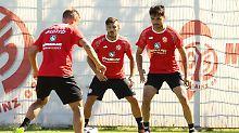 Der Bundesliga-Check: FSV Mainz: Fußballer, die auf Ziegen starren