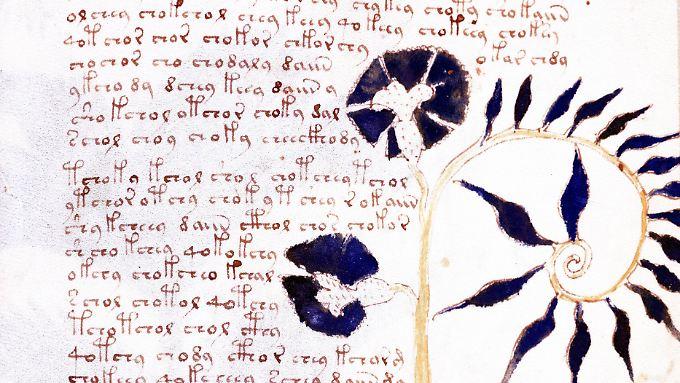 Das Voynich-Manuskript ist eines der rätselhaftesten Schriftstücke der Welt.