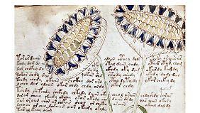 Auch die gemalten Pflanzen wurden noch von niemanden in der Natur gesehen.