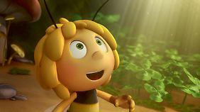 Da staunt die Biene. Wie Film-Biene Maja sind auch echte Bienen neugierig und äußerst lernfähig.