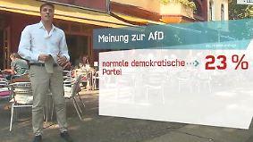 n-tv Trendbarometer: Das denkt Deutschland über die AfD