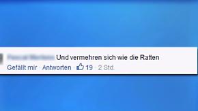 Hasskommentare im Internet: Politik fordert soziale Netzwerke zu Transparenz auf